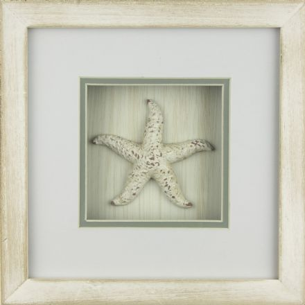 Starfish In White Wash Distressed Wooden Frame Coastal Wall Decor